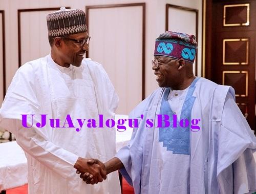 Afenifere Accuses Tinubu Of Peddling 'Fake' News, Denies Endorsing Buhari