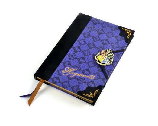 Top 20 Harry Potter Wishlist Items that I need in my life hogwarts journal