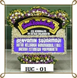 IUC+-+01