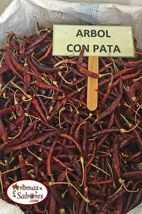 Chile de arbol mexicano