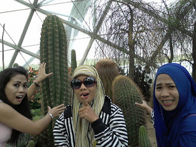 Tanaman Kaktus di Garden By The Bay Singapura