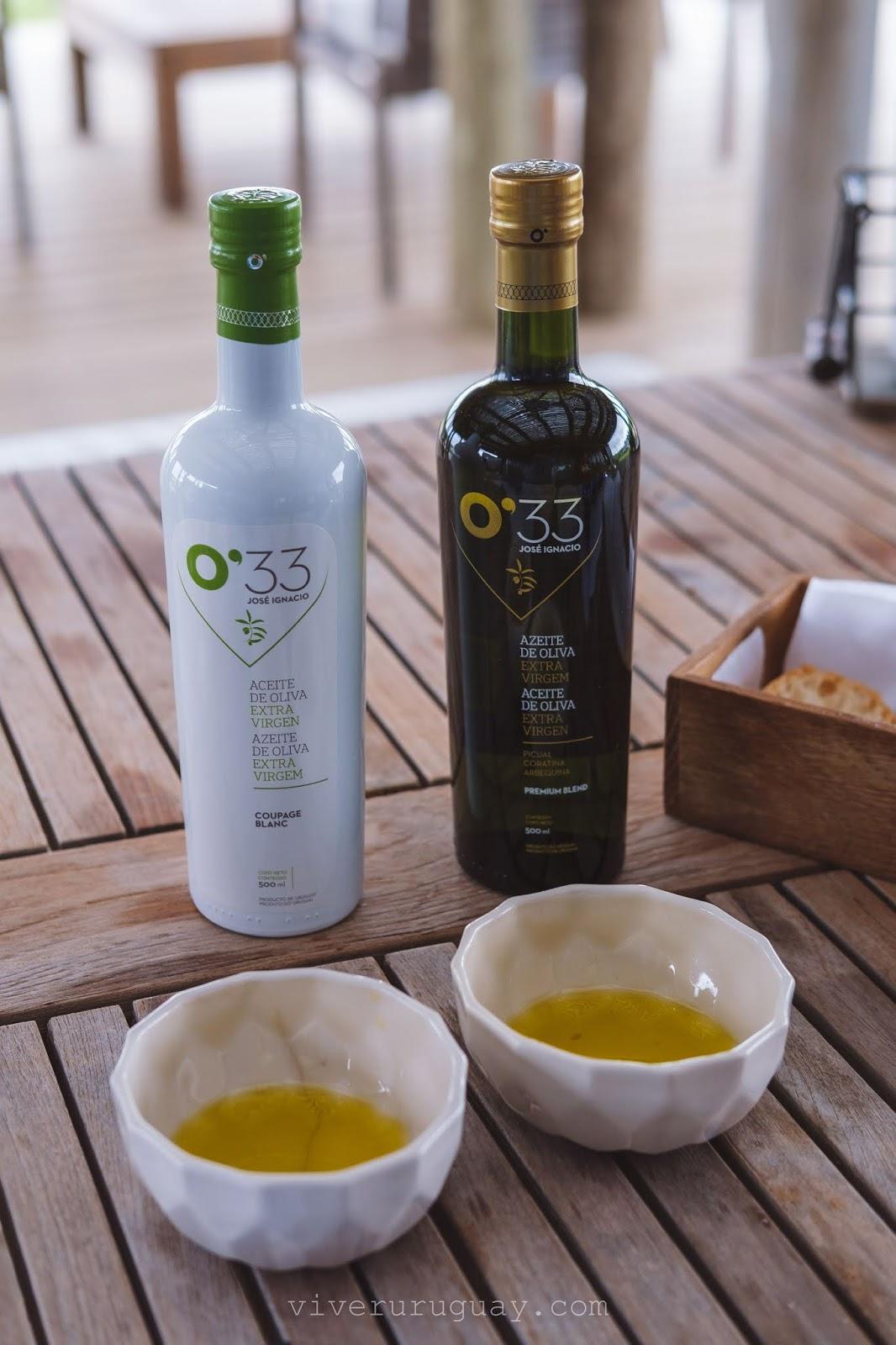 Degustacao azeite de oliva no Uruguai