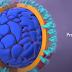 COVID-19. What Happens If You Get Coronavirus?