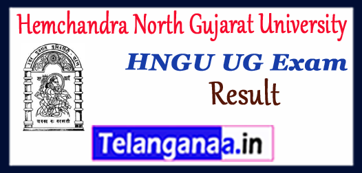 HNGU Hemchandra North Gujarat University UG 1st 2nd 3rd 4th 5th 6th semester Result 2017