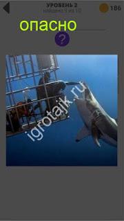 800 слов опасная игра с акулой под водой 2 уровень