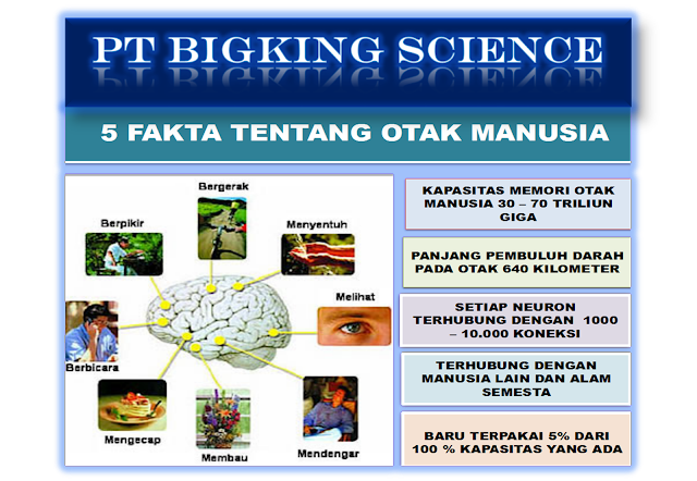 http://www.brain-king-plus.com/ >> 08123 01 8900 <,