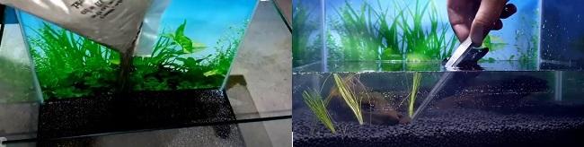 Setup substrate in aquarium