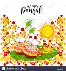 Best Pongal Wishes | Wishes For Pongal Festival | Latest Pongal Wishes