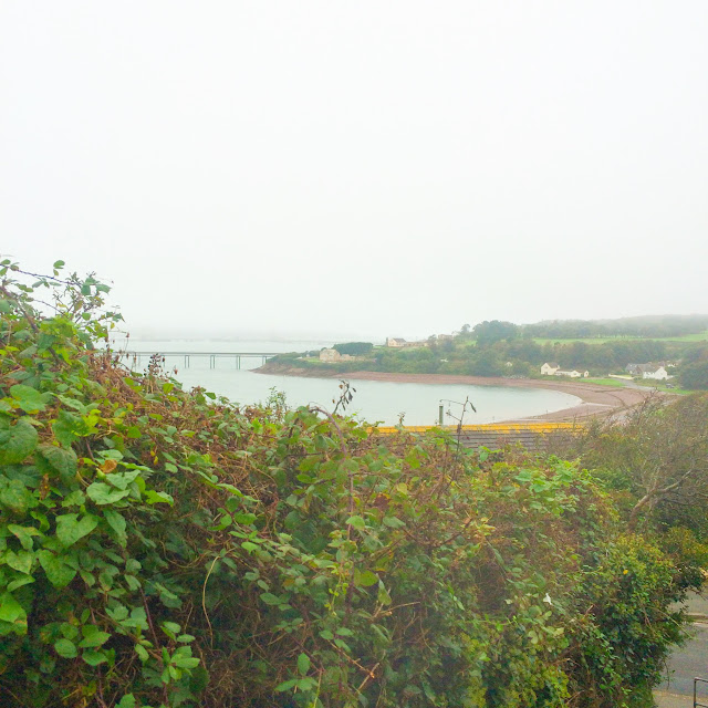 beach, sea view,  school runs, pembrokeshire, rural life, everyday, nature walk, girl with umbrella, umbrella, rainy walk, thomas the tank, spiderweb, spiderweb in rain, pink flowers, pink chysantheums,