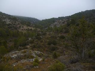 Desvío hacia Barranco de los Escaramujos