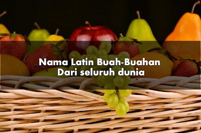 Nama Latin Buah-Buahan