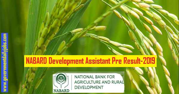 NABARD Development Assistant Results 2019
