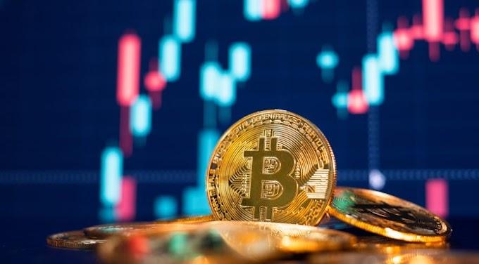 Apesar do medo extremo no mercado cripto o número de usuários de Bitcoin atinge recorde histórico