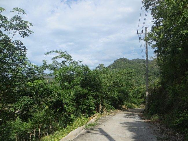 Обрыв возле дороги