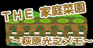 日本の伝統的食文化