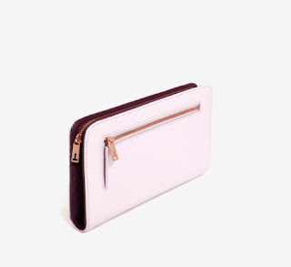 Ted Baker Colour Block Travel Wallet (Pale Pink)
