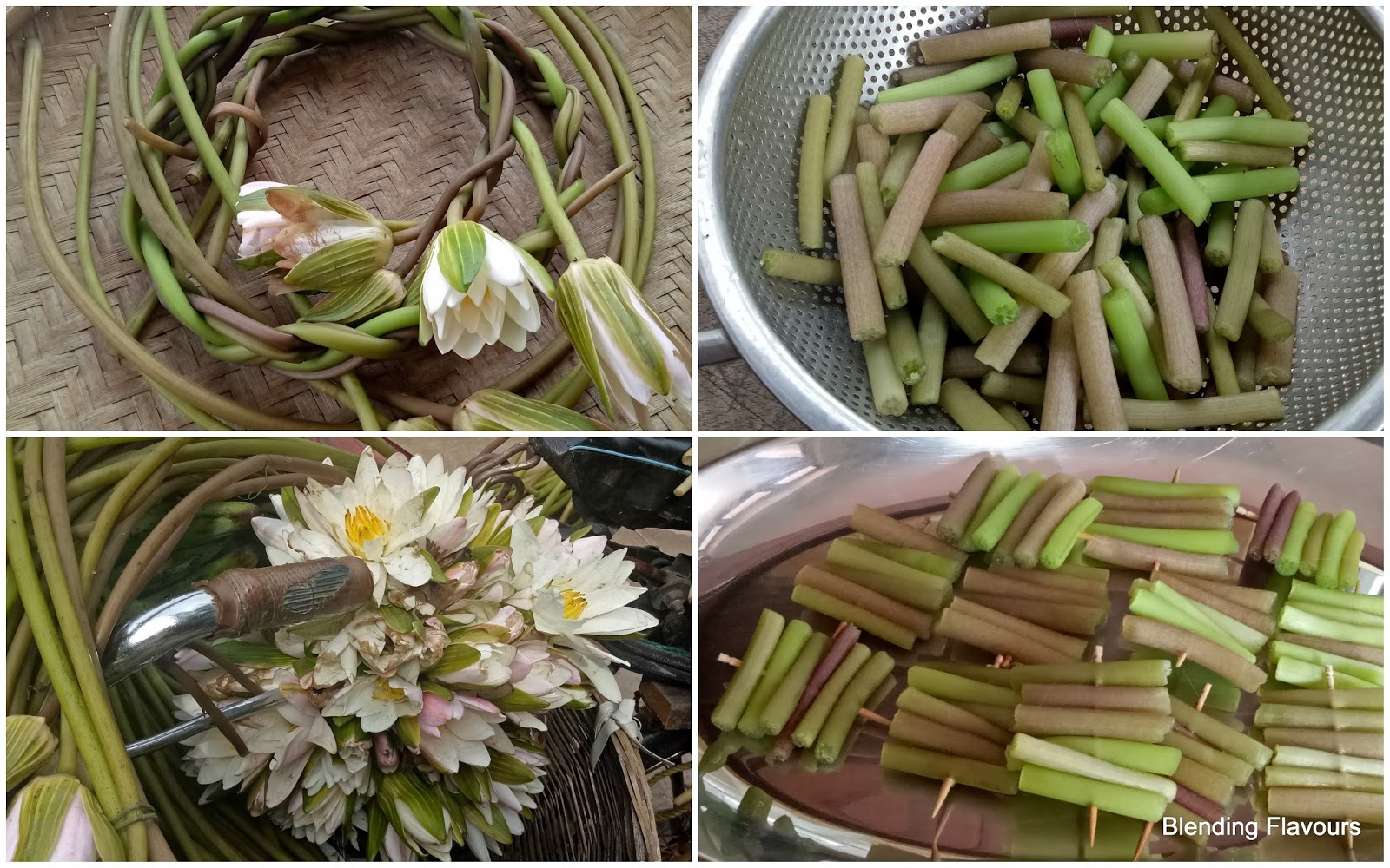 Blending flavours fritters made of water lily stalks water lily stalk fritters recipe adapted from here ingredients water lily stems chick pea flour rice flour chilli powder nigella seeds izmirmasajfo Gallery