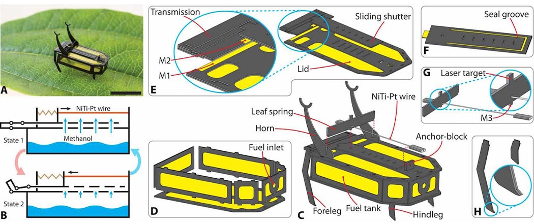 RoBeetle micro robot