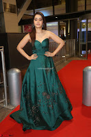 Raashi Khanna in Dark Green Sleeveless Strapless Deep neck Gown at 64th Jio Filmfare Awards South ~  Exclusive 166.JPG