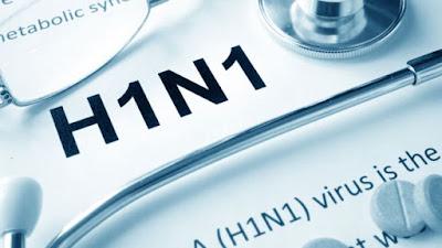 Enfermedad Influenza AH1N1