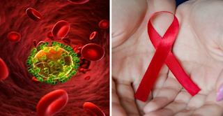 It's Official: Scientists From The Pasteur Institute Have Managed To Destroy Cells Infected By Aids