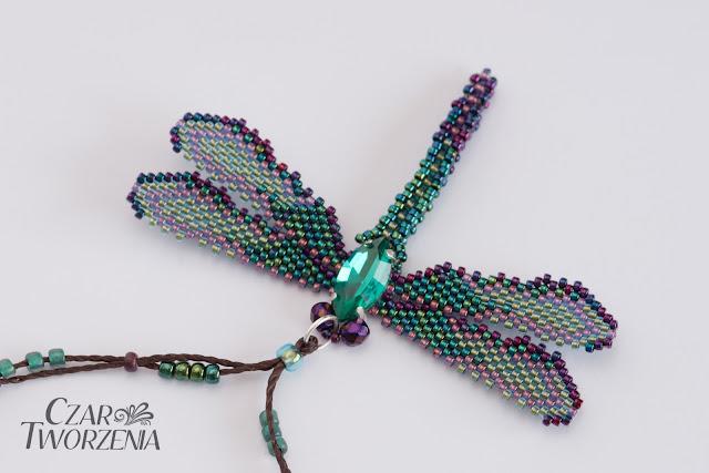 zawierzka owad ważka leśne kolory