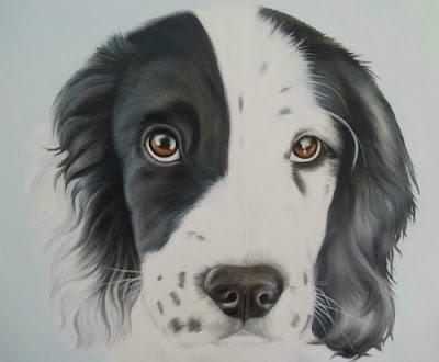 Sprocker Spring Cocker Spaniel Oil Painting Pet Portrait