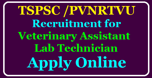 TSPSC/PVNRTVU Recruitment for Veterinary Assistant and Lab Technician Apply Online @tspsc.gov.in /2020/07/TSPSC-PVNRTVU-Recruitment-for-Veterinary-Assistant-and-Lab-Technician-Apply-Online-tspsc.gov.in.html