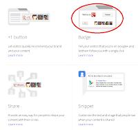 Cara Memasang Lencana Fans Page Google+ di Blog 3