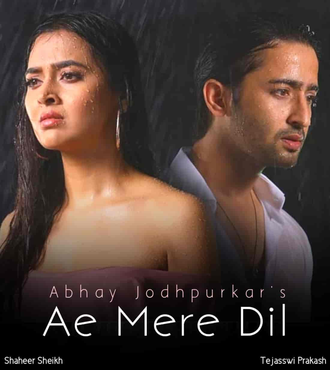 Ae Mere Dil Sad Hindi Song Image Features Shaheer Sheikh and Tejasswi Prakash
