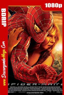 El Hombre Araña 2 (2004) BDRip 1080p Latino-Ingles