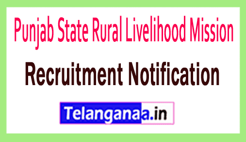 Punjab State Rural Livelihood Mission PSRLM Recruitment
