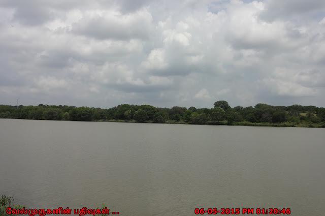 Pedernales River State Park Texas