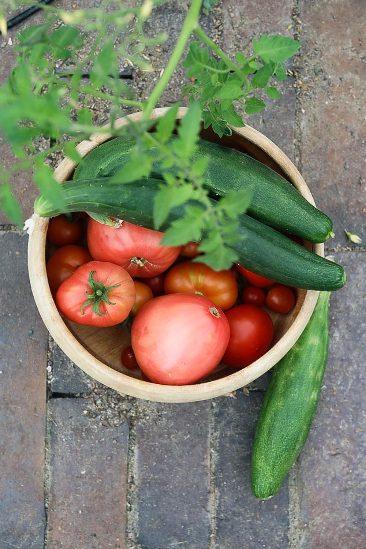tomaattisato-kasvihuoneesta-100outdoor
