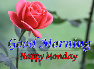 New Good Morning 4k Full HD Images Download For Daily%2B97