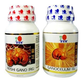 Agen RG-GL DXN,Khasiat Reishi Gano (RG)-Ganocelium (GL)