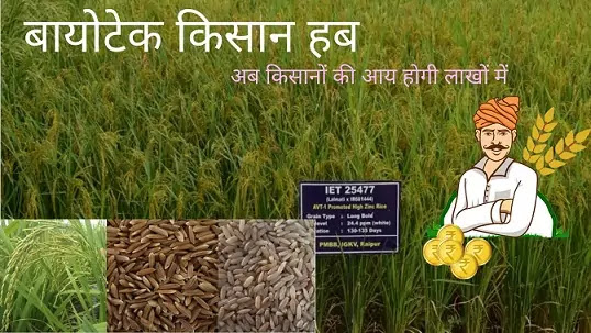 Biotech Kisan Hub: बायोटेक किसान हब