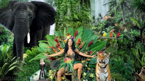 Katy Perry Roar übersetzung Deutsch