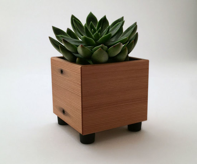 Succulent Planter Pot in Reclaimed Wood
