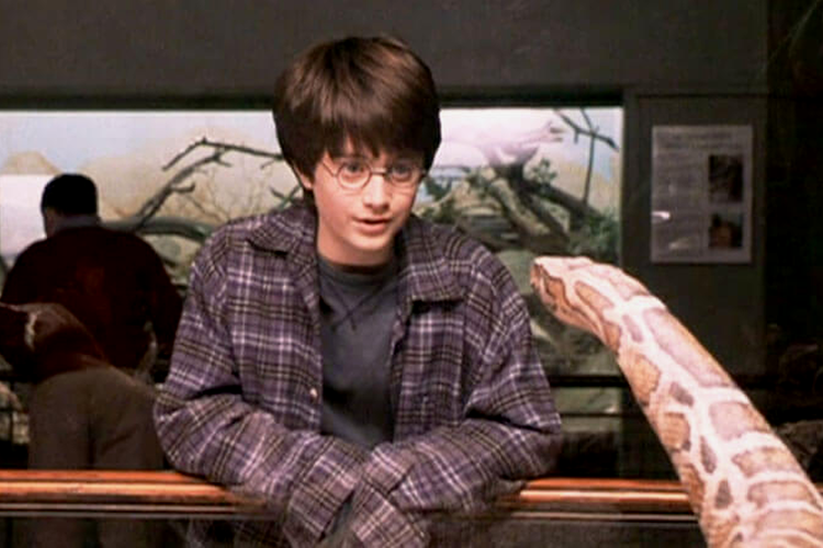 Potter Talk: Harry Could Speak Parseltongue. Would you too?