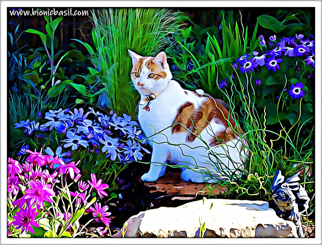 Amber's Flower Explosion ©BionicBasil® Caturday Art