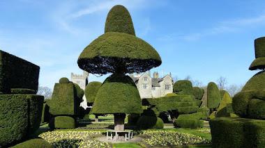 Topiary Garden en Levens Hall, el jardín topiario más antiguo y extenso del mundo