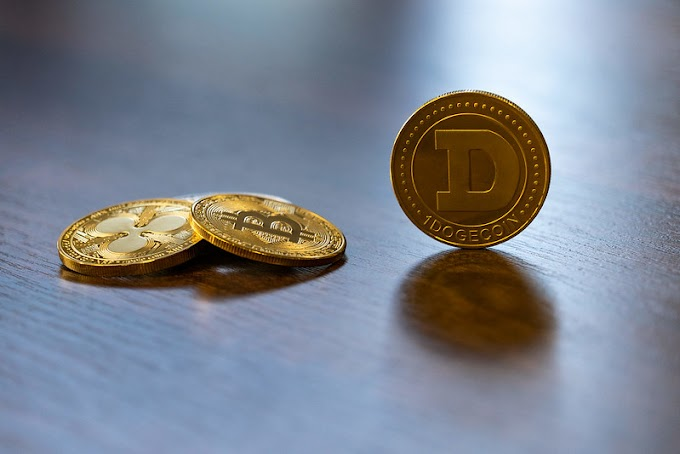 Dogecoin was Started as a Joke Acquired the Market Cap of $52 Billion.