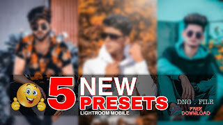 lightroom presets free download zip  free lightroom presets  lightroom presets free download zip 2019  free lightroom presets for portraits  best lightroom presets free  professional lightroom presets  lightroom brown preset  lightroom presets png