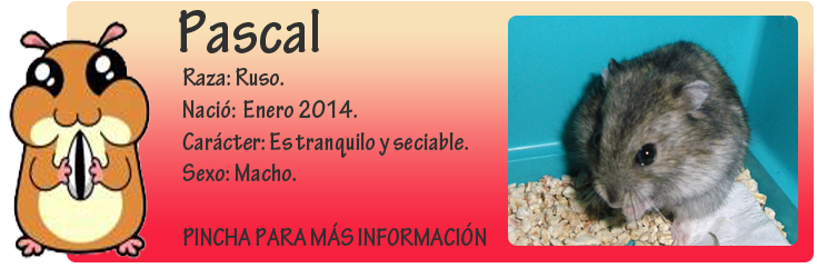 http://almaexoticos.blogspot.com.es/2014/04/pascal-fruto-de-la-ignorancia-humana.html