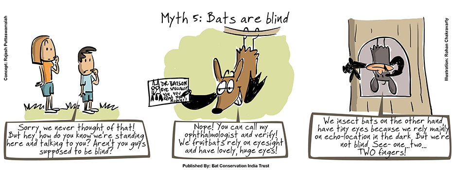 Green Humour Dispelling Bat Myths With Cheeku And Meeku