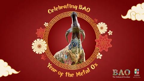 Celebrating BAO