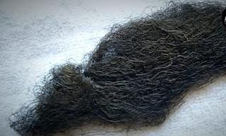 Bigfoot Hair