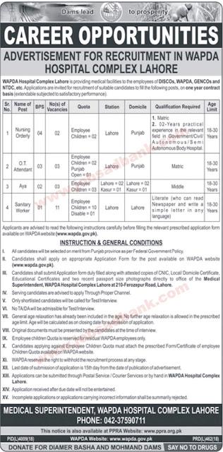 WAPDA Hospital Complex Lahore Jobs 2019 June - July Application Form Download Latest 2019
