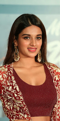 Nidhi Agarwal (Nidhhi Agerwal) Biography, Wiki, Age, Height, Weight, Body Measurements, Education, Caste, Family, Husband, Boyfriend and More.